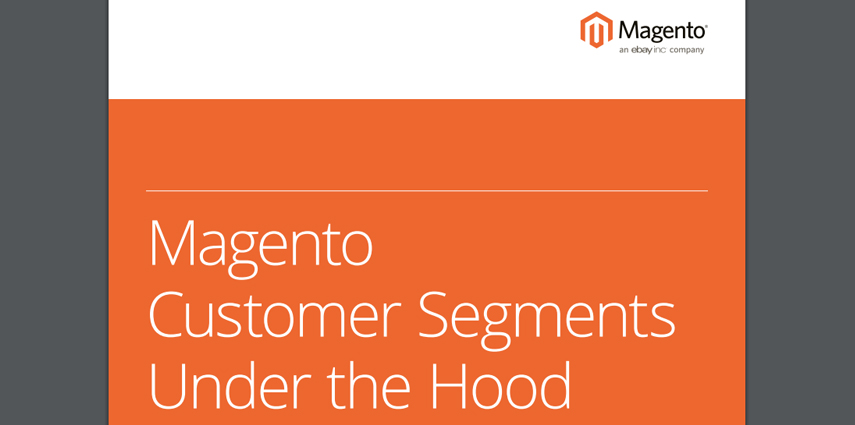 ECG_Whitepaper_Customer_Segments