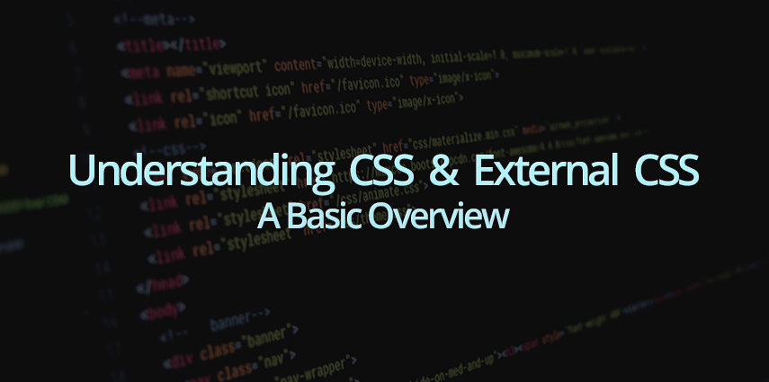 Rasbor_Understanding_CSS_and_External_CSS_A_Basic_Overview