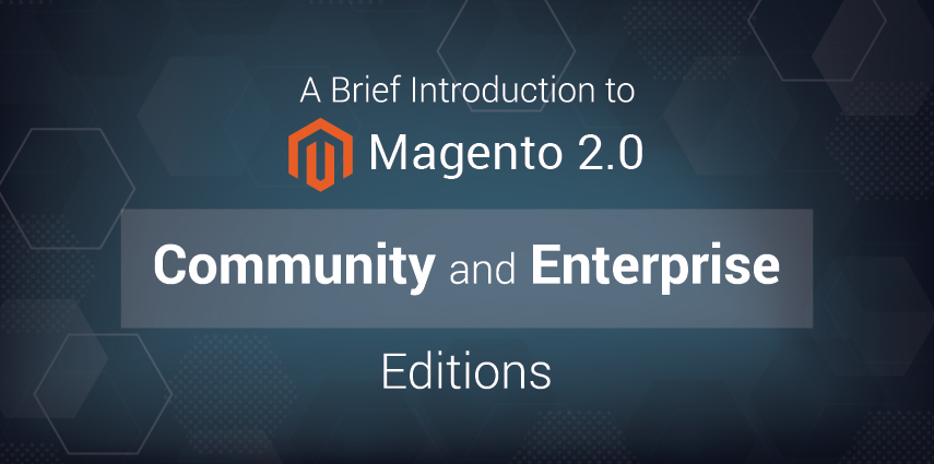Rasbor_A_Brief_Introduction_to_Magento_2.0_Community_and_Enterprise_Editions-01